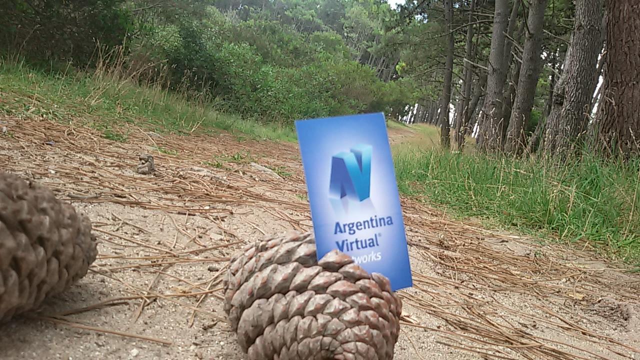 Argentina Virtual en el bosque energético